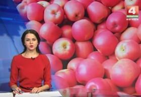 Партию яблок изъяли сотрудники Могилевской таможни