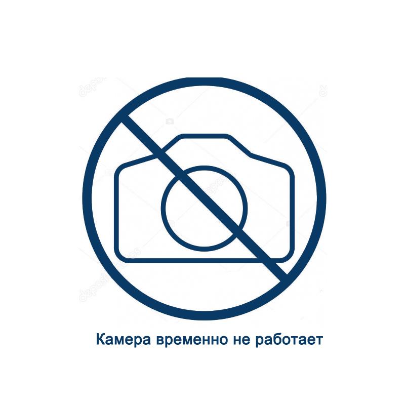Web-камера Мокраны. Онлайн видео очереди (выезд из Республики Беларусь)