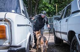 Правоохранительная деятельность